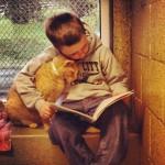 ODLIČNA IDEJA: Deca čitaju knjige macama u skloništima, kako bi ih umirili!