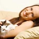 MAČKOLJUPCI, OVO JE VAŠ POSAO SNOVA: Traži se stručnjak za maženje mačića!