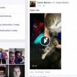 UHVAĆEN JOŠ JEDAN ZLOČINAC: Damir, koji je nalivao mačku alkoholom pa se hvalio na Fejsbuku, odgovaraće pred zakonom!