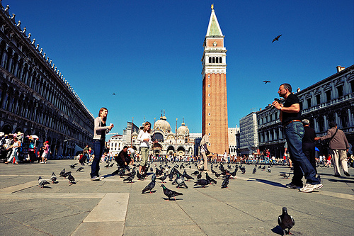 trg sa golubovima