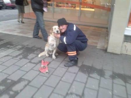 Pas i radnik gradske čistoće petface
