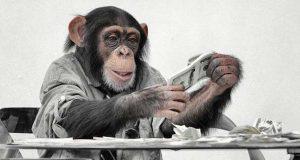 majmun robin hood
