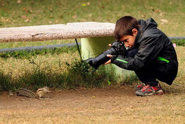 decak fotograf prirode