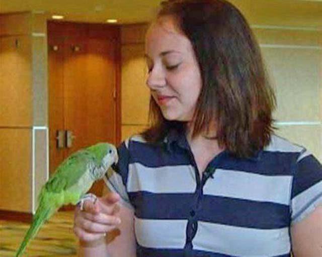 papagaj spasao dete
