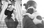 11 FOTOGRAFIJA zbog kojih ćete poželeti da zagrlite svog ljubimca – ŠTO JAČE!