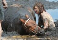 spasavala konja iz blata petface