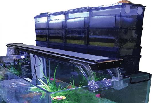 filter akvarijum petface