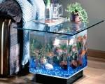 Akvarijum nije ukras već životni prostor njegovih stanovnika