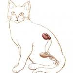 Bešika kod mačaka – upala, kamenje i ruptura bešike