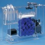 Filteri za akvarijum: Zašto su filteri za akvarijum važni?