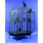 Kavezi za papagaje: Kakvi kavezi za papagaje postoje?