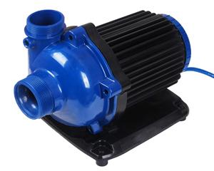 petopedija-pumpa-za-vodu-2