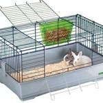Kavez za kuniće: Kako odabrati adekvatan kavez za kuniće?