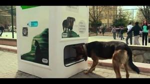 recikliraj-hranu-za-pse-petface