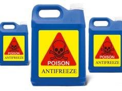 trovanje antifrizom petface