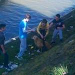 MALI HEROJI: Osnovci iz Kragujevca spasili psa koji je upao u reku Lepenicu!