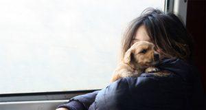 devojcica i pas petface.jpg