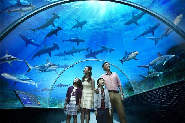 najveci akvarijum