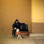 SRAMNO: Niko ne želi da mu iznajmi stan, jer ima pit bula! Odlučio – ostajemo na ulici obojica!