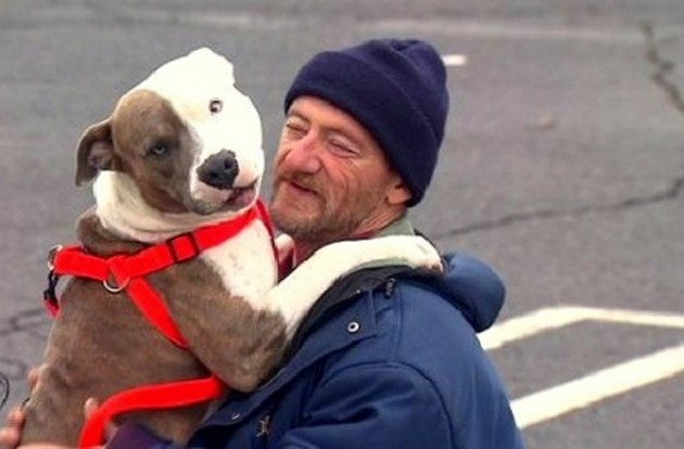 niko ne zeli da mu izda sta zbog psa petface