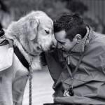 Evo kako da psu zaista budete najbolji prijatelj!