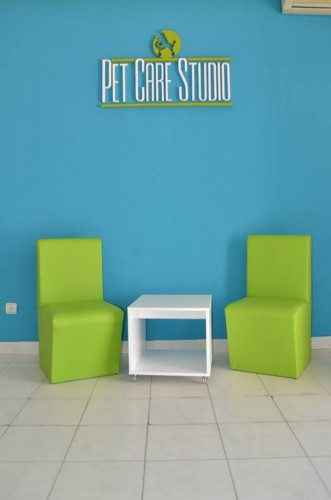 pet care studio petface
