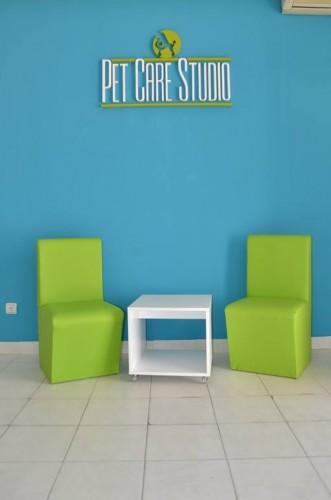 pet care studio petface