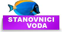 http://petface.net/kategorija/petopedija/akvaristika-petopedija/stanovnici-akvarijuma/