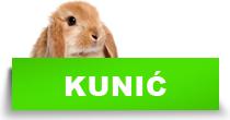 http://petface.net/kategorija/petopedija/glodari-petopedija/kunic/