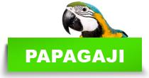 http://petface.net/kategorija/petopedija/ptice-petopedija/papagaji/