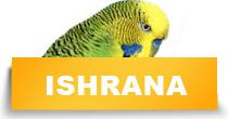 http://petface.net/kategorija/petopedija/ptice-petopedija/papagaji/ishrana-papagaji/