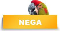 http://petface.net/kategorija/petopedija/ptice-petopedija/papagaji/nega-papagaji/