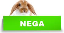 http://petface.net/kategorija/petopedija/glodari-petopedija/kunic/nega-kunic/