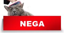 http://petface.net/kategorija/petopedija/macke-petopedija/nega-macke-petopedija/