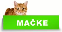 http://petface.net/kategorija/petopedija/macke-petopedija/