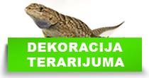 http://petface.net/kategorija/petopedija/egzoticne-zivotinje/dekoracija-terarijuma/