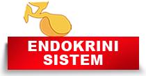 http://petface.net/kategorija/petopedija/psi-petopedija/zdravlje-psi-petopedija/bolesti-endokrinog-sistema-zdravlje-psi-petopedija/