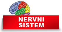 http://petface.net/kategorija/petopedija/psi-petopedija/zdravlje-psi-petopedija/bolesti-nervnog-sistema-zdravlje-psi-petopedija/