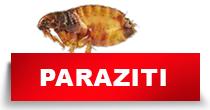 http://petface.net/kategorija/petopedija/psi-petopedija/zdravlje-psi-petopedija/paraziti-zdravlje-psi-petopedija/