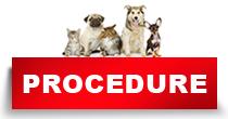 http://petface.net/kategorija/petopedija/psi-petopedija/zdravlje-psi-petopedija/procedure-zdravlje-psi-petopedija/