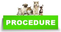 http://petface.net/kategorija/petopedija/macke-petopedija/zdravlje-macke-petopedija/procedure/