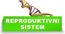 http://petface.net/kategorija/petopedija/macke-petopedija/zdravlje-macke-petopedija/bolesti-reproduktivnog-sistema/