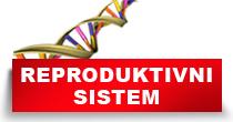 http://petface.net/kategorija/petopedija/psi-petopedija/zdravlje-psi-petopedija/bolesti-reproduktivnog-sistema-zdravlje-psi-petopedija/