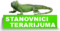 http://petface.net/kategorija/petopedija/egzoticne-zivotinje/stanovnici-terarijuma/