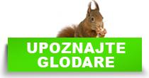 http://petface.net/kategorija/petopedija/glodari-petopedija/upoznajte-glodare/