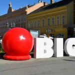 I novosadski šoping centar BIG otvara vrata SVIM LJUBIMCIMA 28.marta!