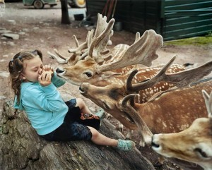 dete i zivotinje petface (11)