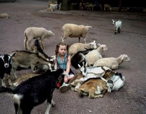 dete i zivotinje petface (23)