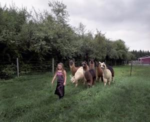 dete i zivotinje petface (6)