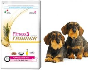 fitness trainer hrana za pse petface